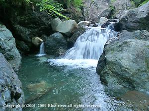 photo2009_1.jpg